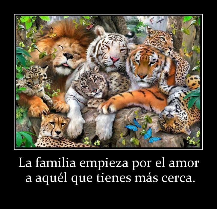 amordefamilia11 Imagenes de amor a la Familia para Whatsapp