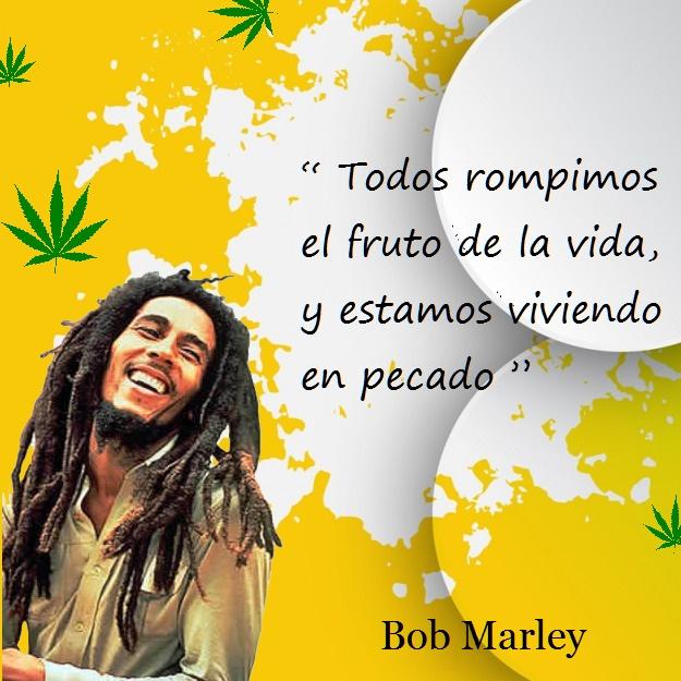 Bob marley frases 16 Imágenes con Frases de Bob Marley