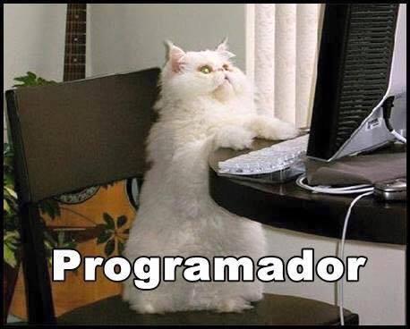 imagenes graciosas de gatos con oficios23 Imágenes Graciosas para Whatsapp (Gatos y Frases)