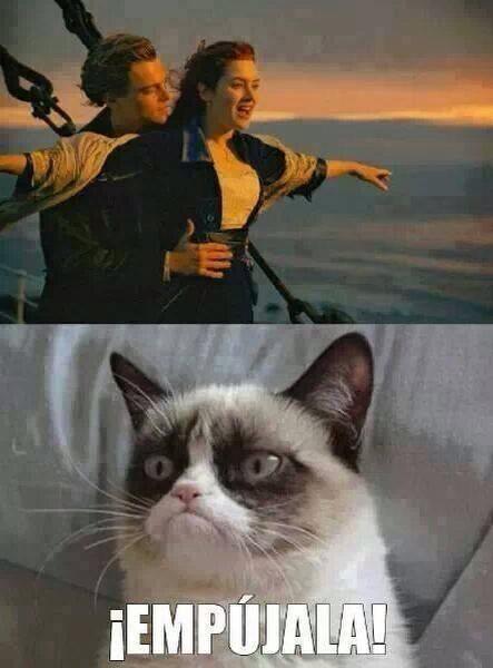 memes de animales chistosos84 100 Memes de Animales Graciosos