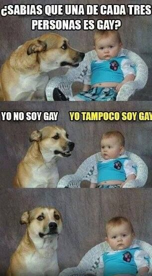 memes de animales chistosos87 100 Memes de Animales Graciosos
