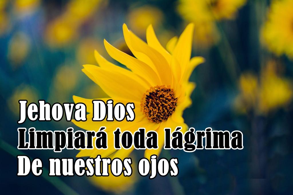 imagenes cristianas para whatsapp103 100 Imágenes Cristianas para Whatsapp