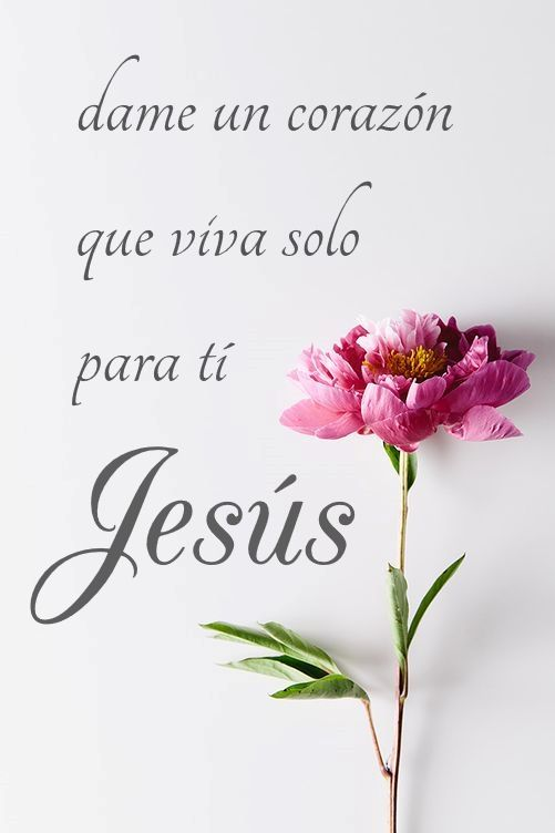 imagenes cristianas para whatsapp20 100 Imágenes Cristianas para Whatsapp
