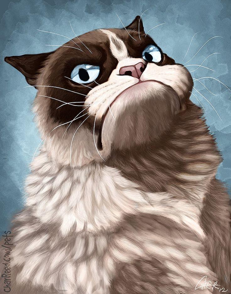 imagenes de gatos para perfil whatsapp33 Imágenes de Gatos para Perfil de Whatsapp