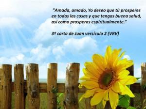 imagenes con frases de la biblia versiculo 300x225 Imágenes con Frases de la Biblia para Whatsapp