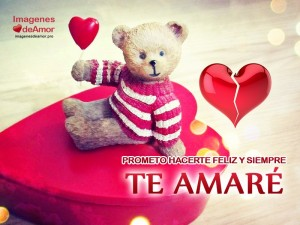 imagenes para whatsapp de amor te amo osito 300x225 45 Imágenes para Whatsapp de Amor (HD)