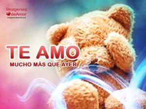 imagenes para whatsapp de amor tierno osito 300x225 45 Imágenes para Whatsapp de Amor (HD)