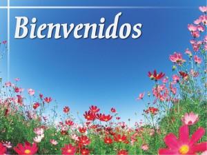frases de bienvenida campo de flores 300x225 Imágenes con Frases de Bienvenida