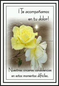 frases de condolencias te acompano en tu dolor 205x300 Imágenes con frases de Condolencias