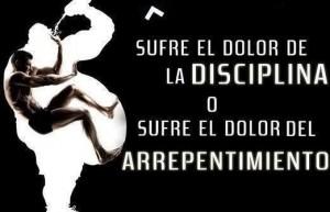 frases de disciplina sufre el dolor de la diciplina 300x193 Imágenes con Frases de Disciplina para Whatsapp